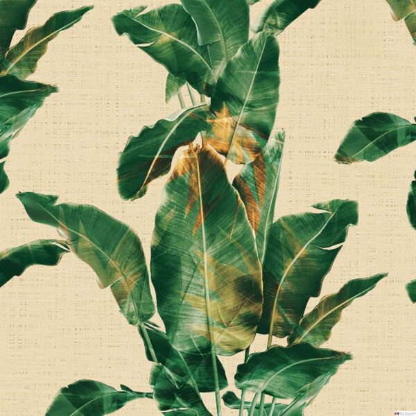 Nature wallpapers dealers in chennai